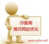 潍坊网站优化进沙盒7月28排名全无解决方案